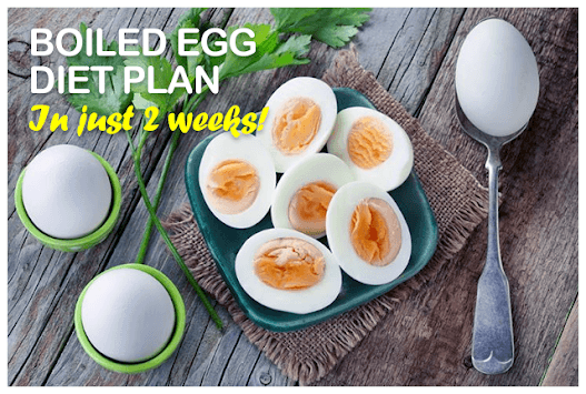 Boiled Egg Diet Secret Plan pc screenshot 1