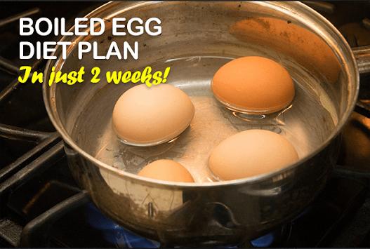 Boiled Egg Diet Secret Plan pc screenshot 2