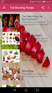 Fat Burning Foods pc screenshot 2