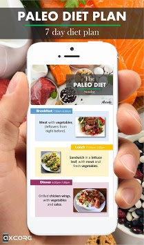 Paleo Diet Plan pc screenshot 2