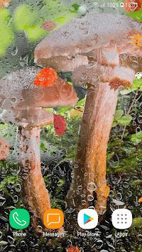 Beautiful Autumn Live Wallpaper HD pc screenshot 1