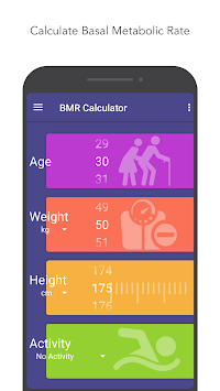 Body Mass Index(BMI) Calculator, BMR, Ideal Weight pc screenshot 2