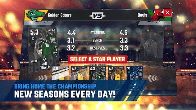 Franchise Basketball 2019 pc screenshot 1