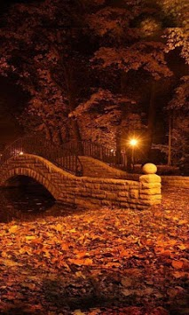 Autumn Twinkle Lights live wallpaper pc screenshot 1