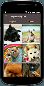 Puppy Wallpaper pc screenshot 1