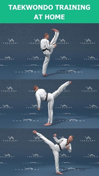 Mastering Taekwondo - Get Black Belt at Home pc screenshot 2
