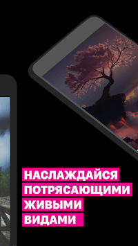 Wallpaper HD (Backgrounds HD) pc screenshot 2