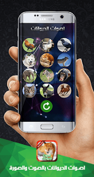 أصوات الحيوانات صوت وصورة pc screenshot 1